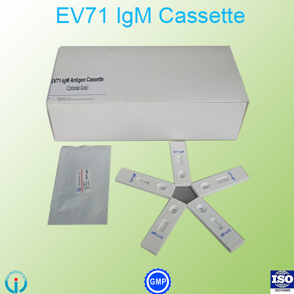 Enterovirus 71 (EV71)-IgM rapid test cassette