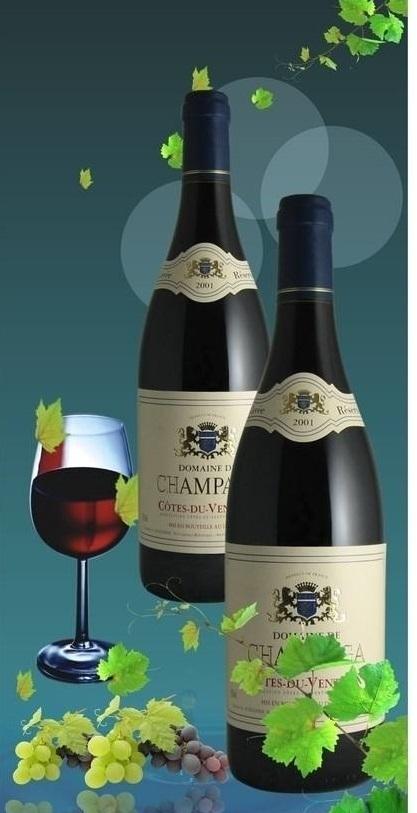 上海港葡萄酒进口中文标签设计审核