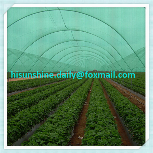 Agro shade net as greenhouse shade net