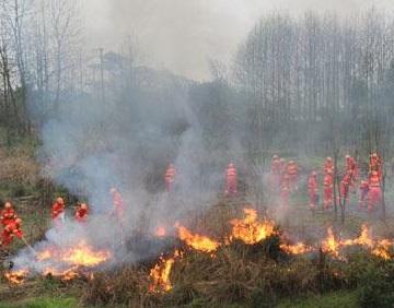 湖南邵陽森林防火無線視頻監控系統案例
