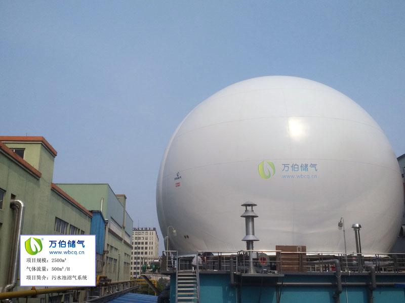 杭州2500方双膜储气柜