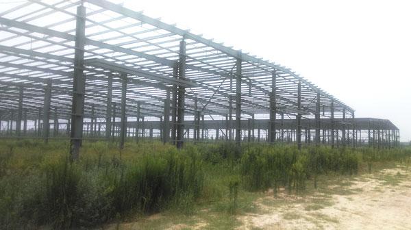 Steel Structure/Prefabricated Steel Building/Steel Struture Workshop