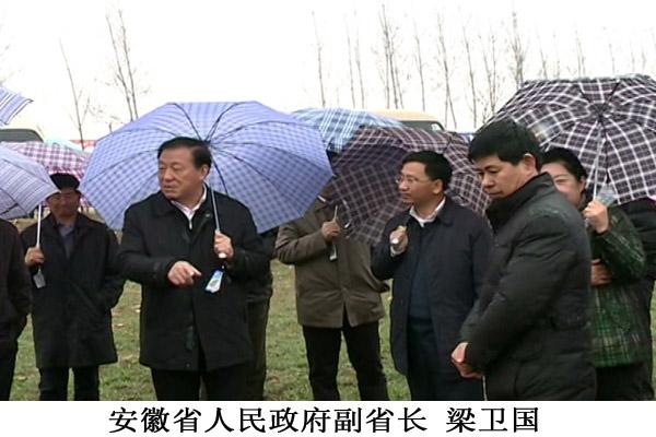 现代农业的领航者——亳州智航