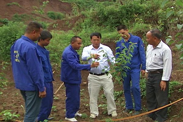 吴中华和他的盘县华龙种植养殖合作社