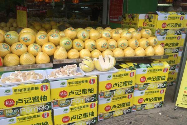中国蜜柚之乡——福建平和琯溪卢记蜜柚