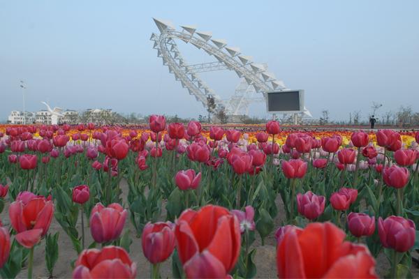 都市農業托起中國夢——中牟縣現代農業發展紀實