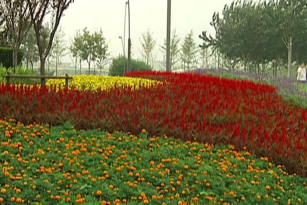 阳光园林为城市添色彩