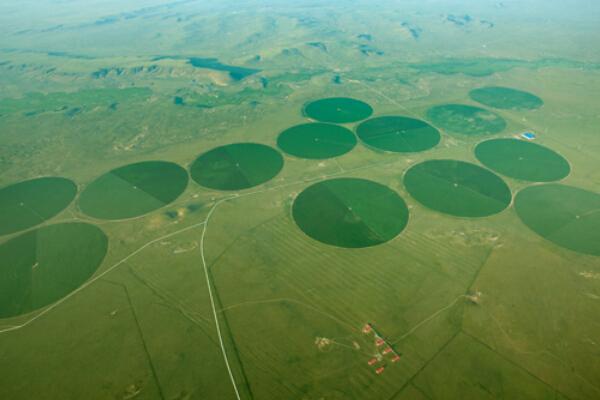 内蒙古宏源农牧业科技股份有限公司