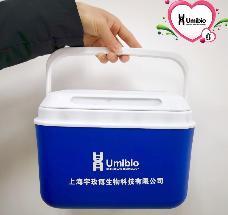 低温运输冰盒 5L