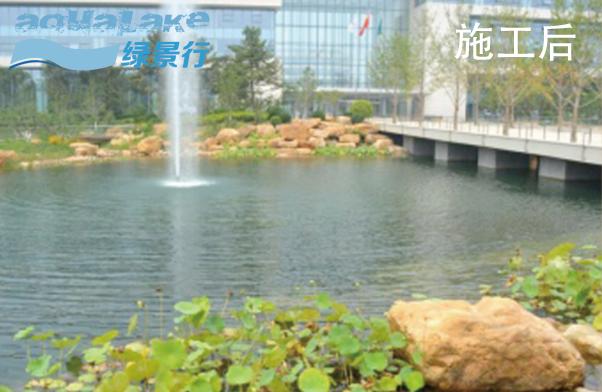 泰康健康管理研究中心人工湖生态建设工程