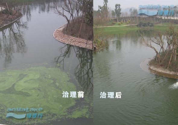 成都恒大山水城人工湖水处理工程