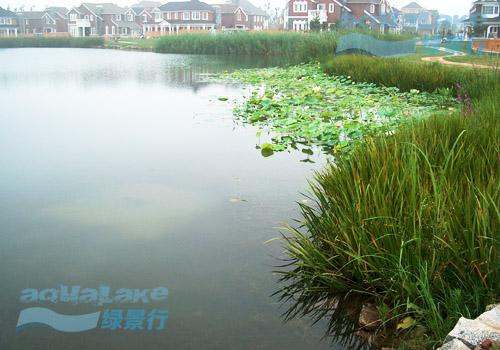 北京提香草堂别墅