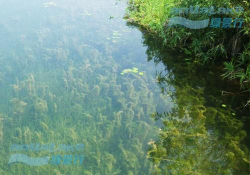 北京故宫博物院宫廷园林研究中心人工湖