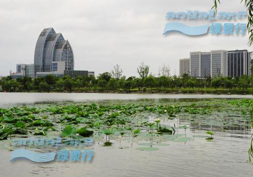 江苏盐城市聚龙湖公园藻华治理工程