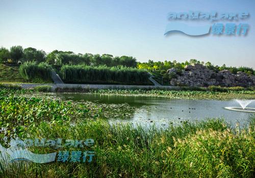 北京亦庄湿地公园