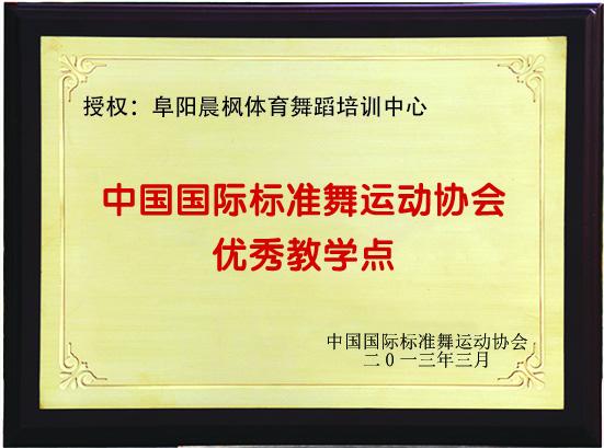 晨枫获奖证书1
