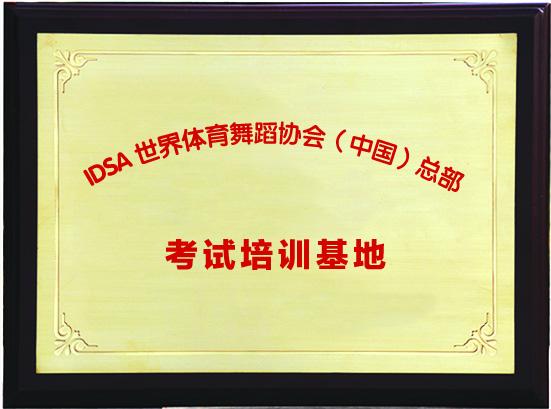 晨枫获奖证书2