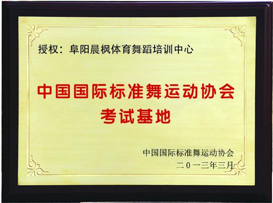 晨枫获奖证书4
