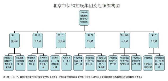 北京保福控股集团党组织结构图