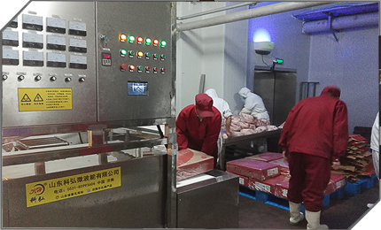 KH-GMTN系列微波肉类解冻设备
