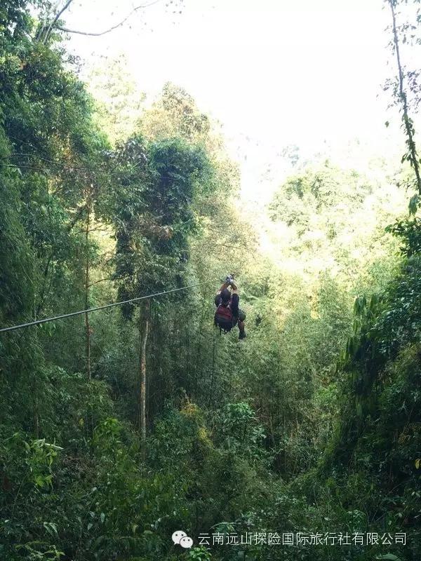 老七--走進狂野的老撾叢林--波喬自然保護區-云南遠山