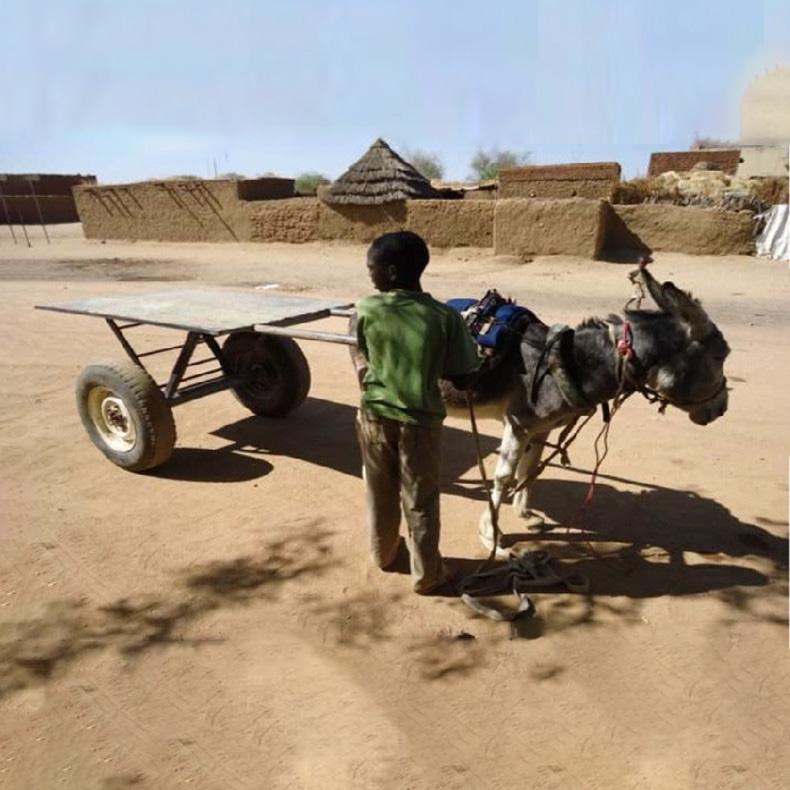ACME艾克美1T吨非洲东南亚南非钢制汽车轮子驴车马车牛车