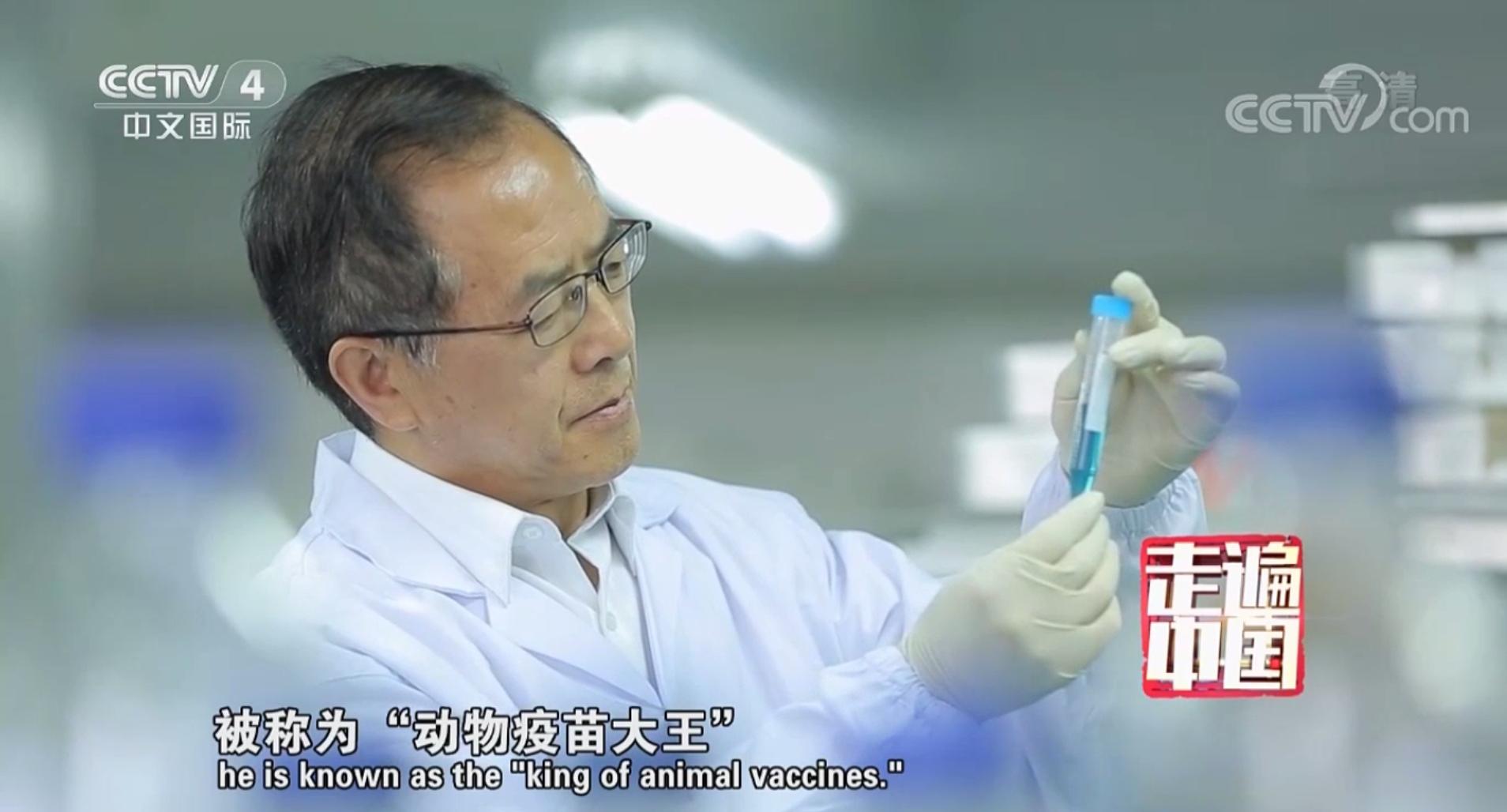 CCTV走进澳门网上正规赌场(一个科学家的企业)——动物疫苗大王武华创业之路