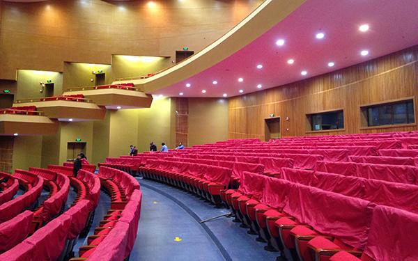 芜湖大剧院