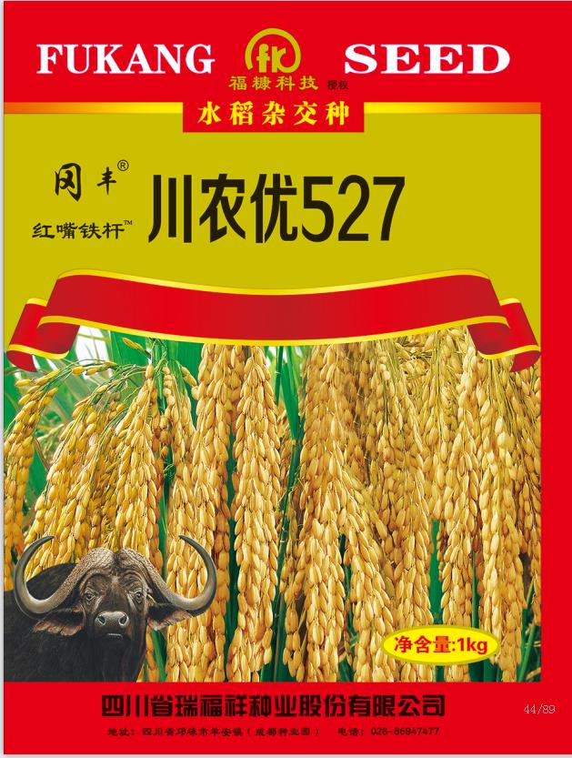 川农优527