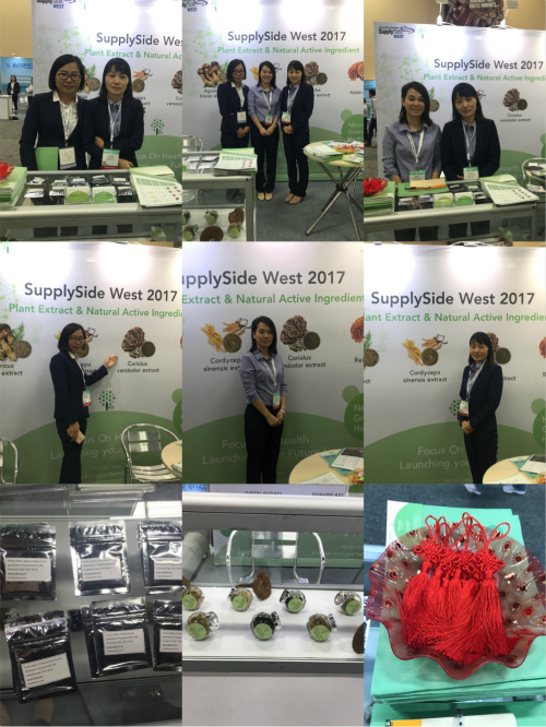 Harvest ~ SSW2017 Exhibition Show