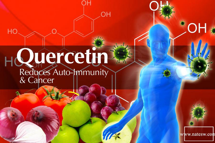 Antioxidant & Anti-Inflammatory Properties - Quercetin