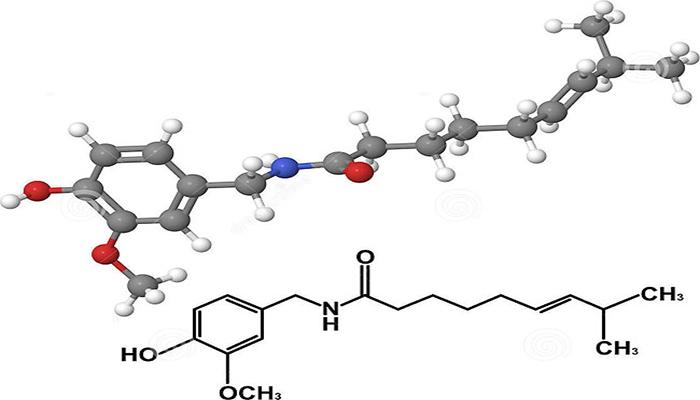辣椒素的化学分子式