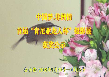 """中國夢.非洲情—首屆""""肯尼亞龍人杯""""攝影展獲獎公示"""