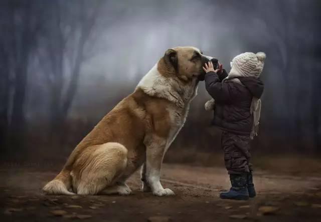 人不能太善良、善良是要给对的人