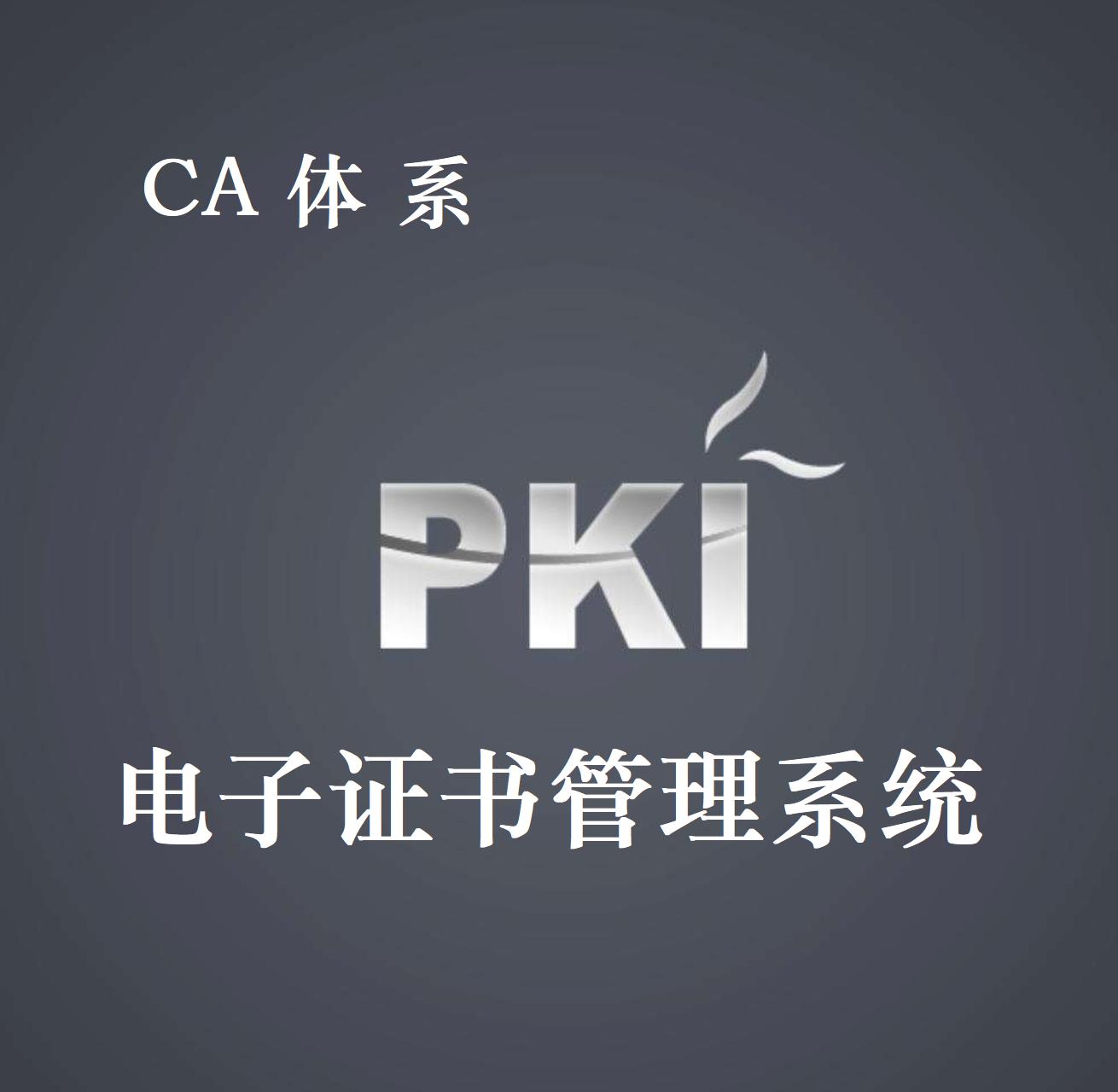 电子证书认证系统 (PKI)