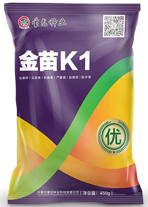 金苗K1(紫)