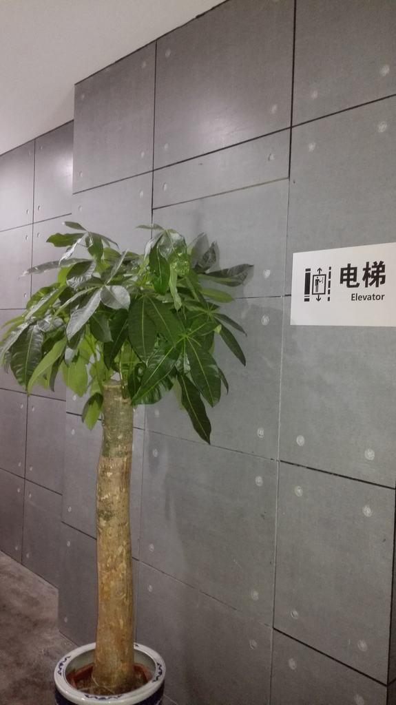 清水板,美岩板,木丝水泥板,北京清水混凝土挂板