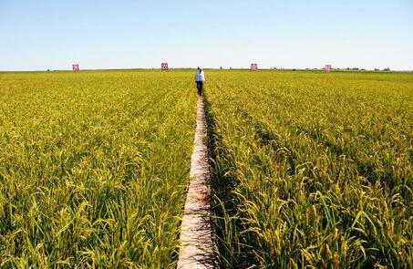 新疆喜润农业科技有限公司