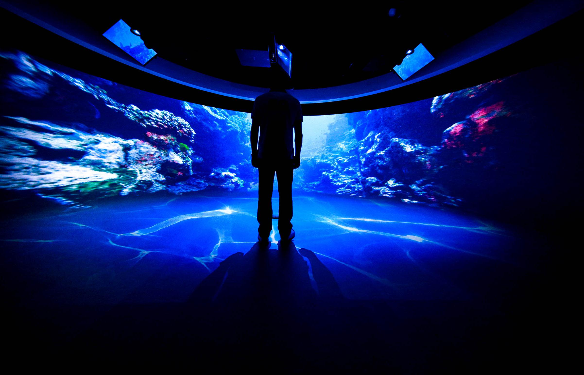 网上牌九 携手 索尼、英特尔 打造世界顶级沉浸式体验