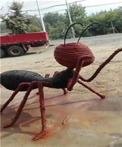 动物-昆虫