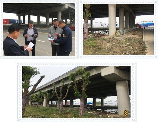 我公司参加市高速分局组织的练市镇练溪大道下穿S12(申嘉湖)高速公路涉路施工现场验收