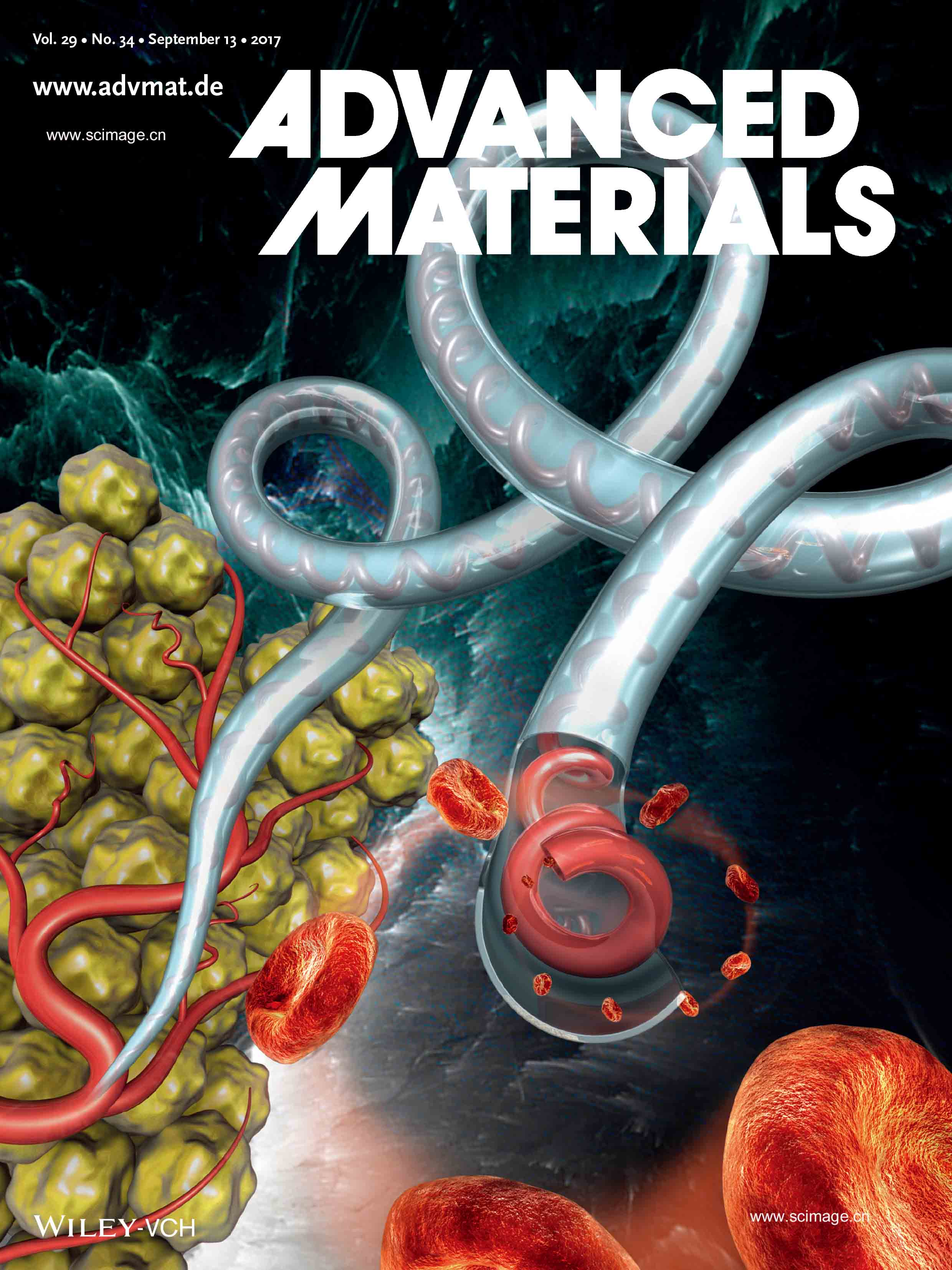 Microfibers: Bioinspired Microfibers with Embedded Perfusable Helical Channels