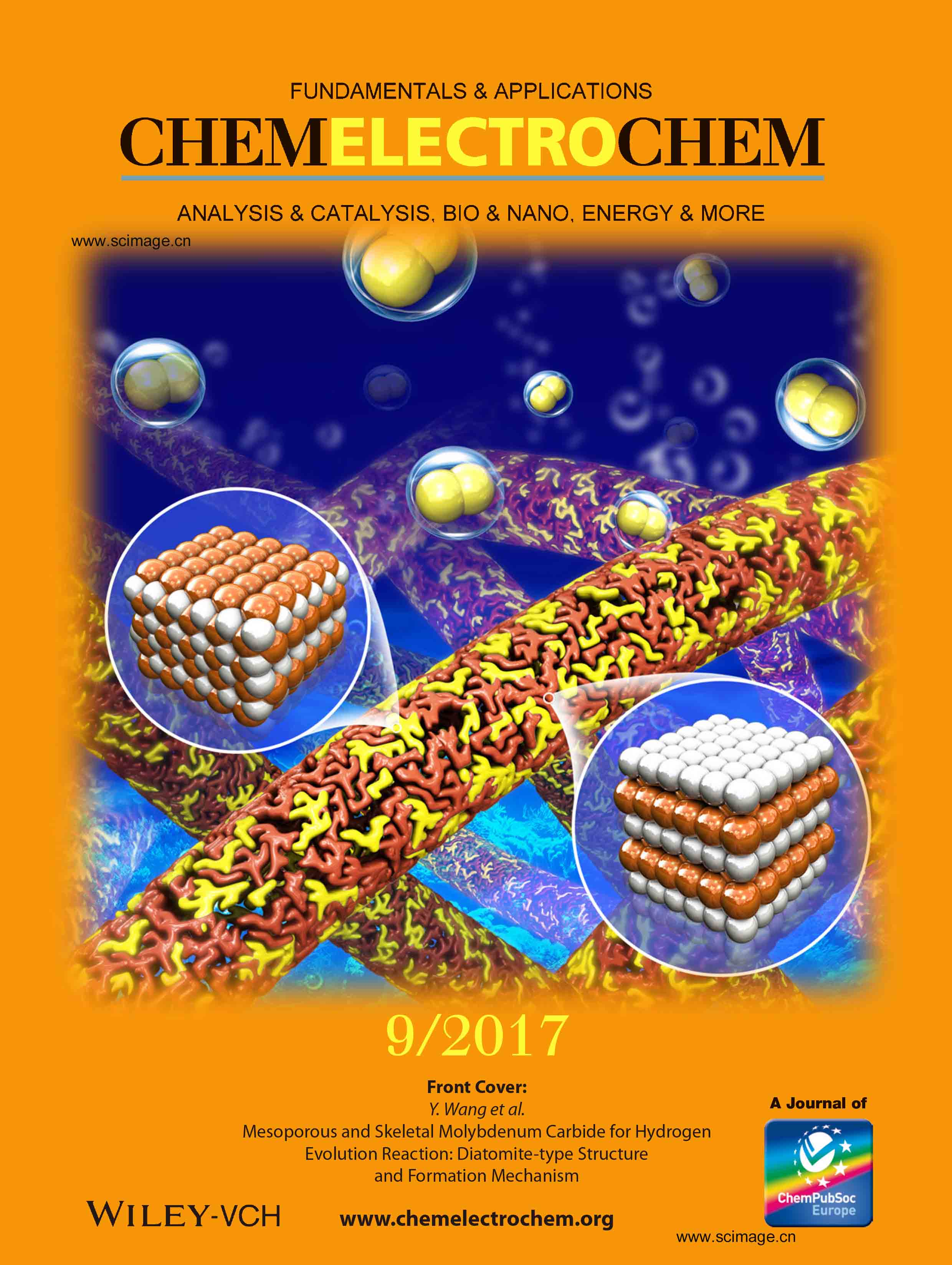 Mesoporous and Skeletal Molybdenum Carbide for Hydrogen Evolution Reaction: Diatomite-Type Structure and Formation Mechanism
