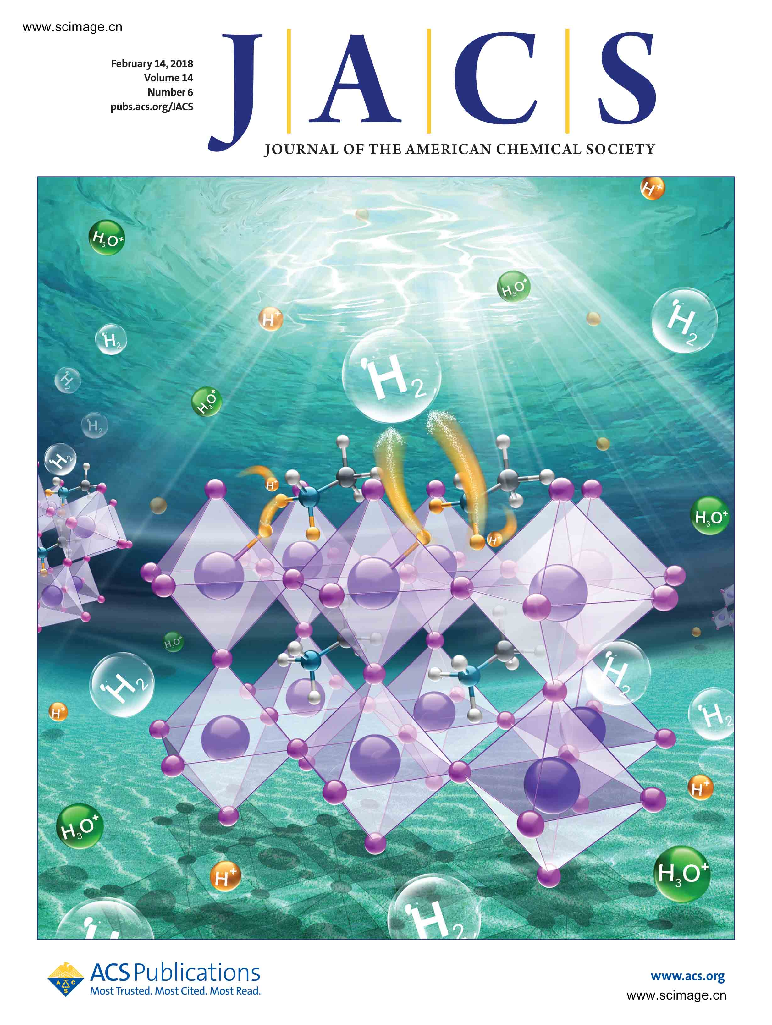 Pb-Activated Amine-Assisted Photocatalytic Hydrogen Evolution Reaction on Organic–Inorganic Perovskites