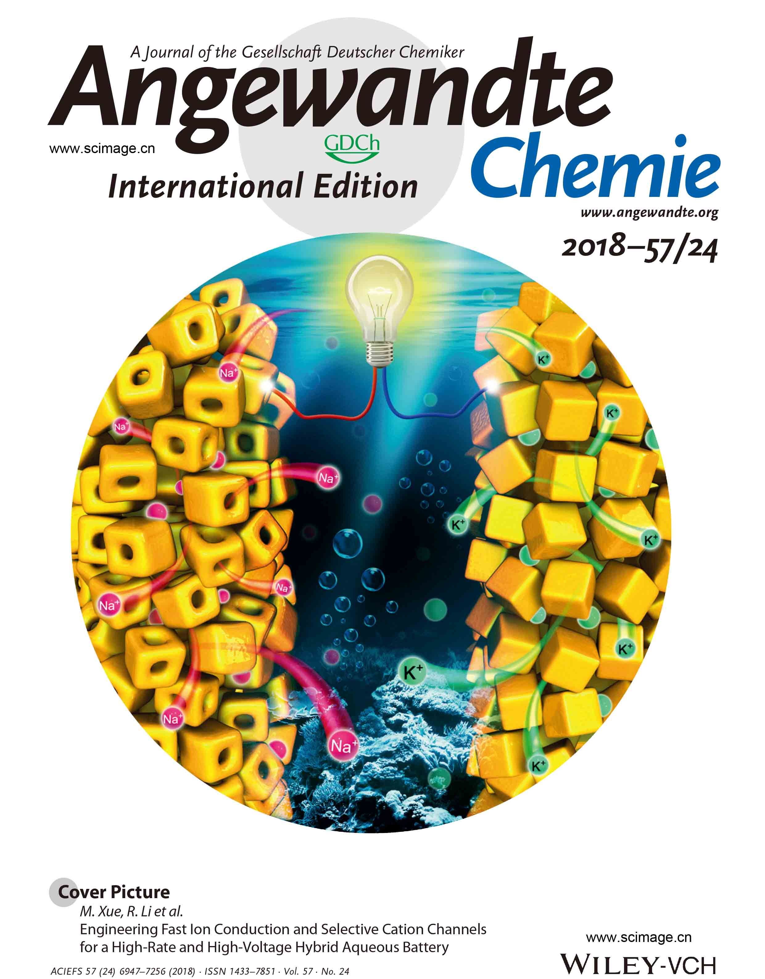Engineering Fast Ion Conduction and Selective Cation Channels for a High‐Rate and High‐Voltage Hybrid Aqueous Battery
