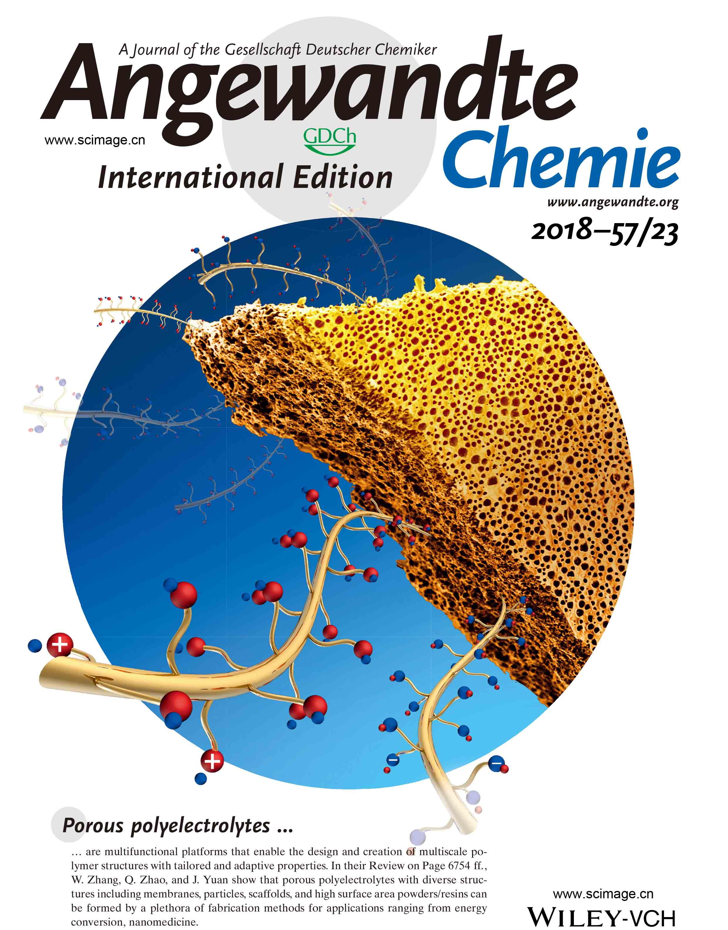 Porous Polyelectrolytes: The Interplay of Charge and Pores for New Functionalities