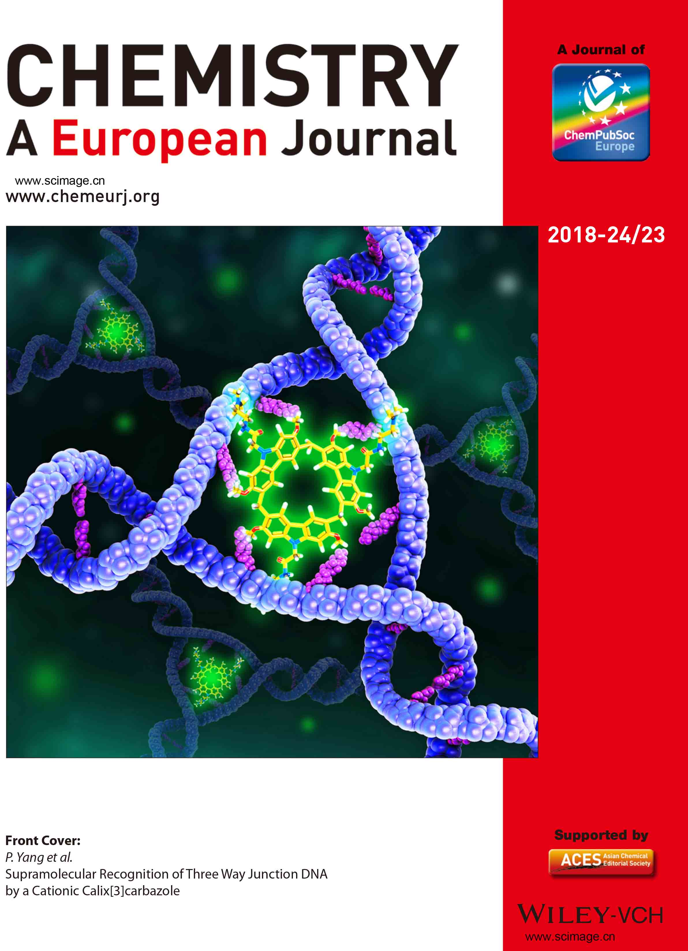 Front Cover: Supramolecular Recognition of Three Way Junction DNA by a Cationic Calix[3]carbazole