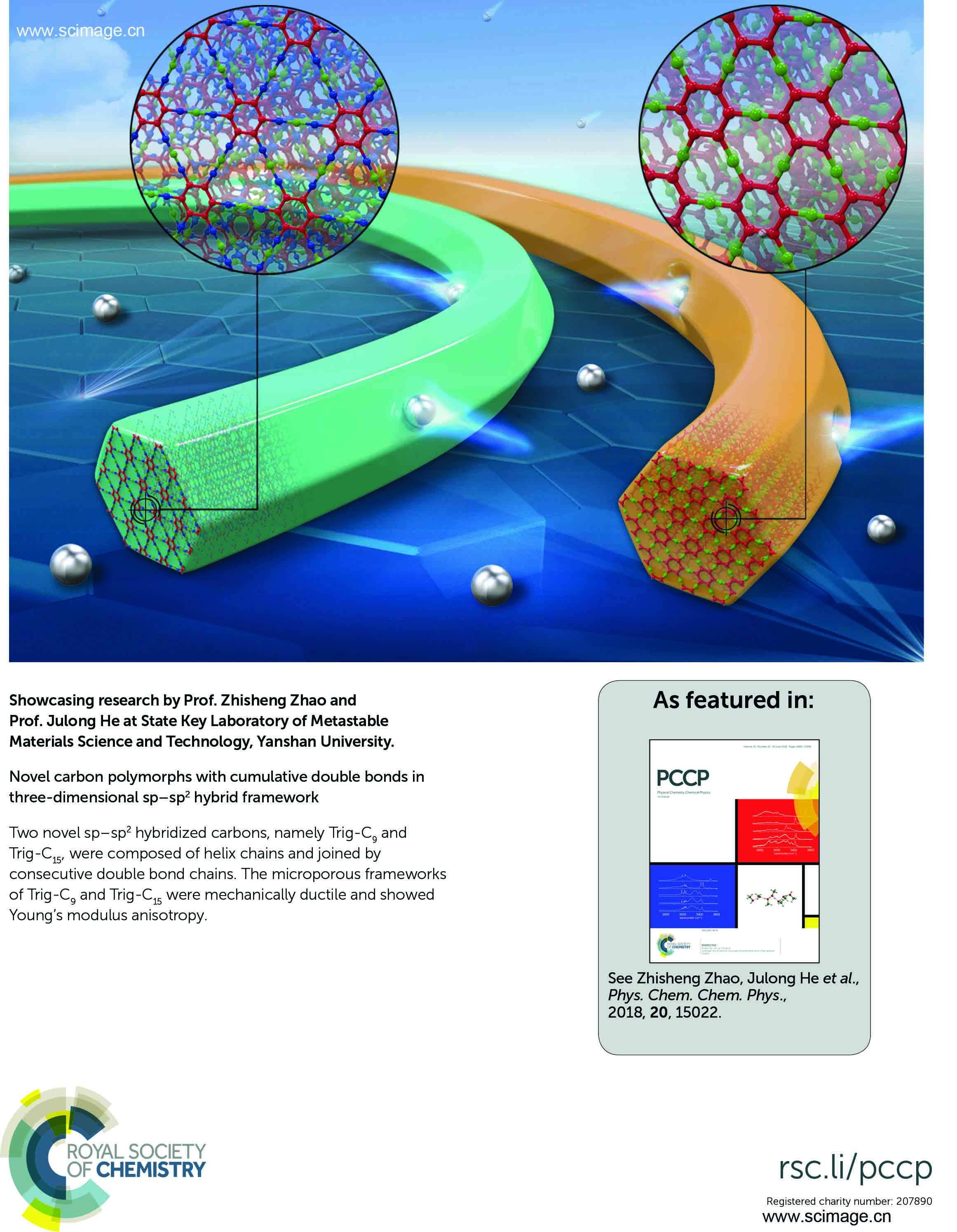 Novel carbon polymorphs with cumulative double bonds in three-dimensional sp–sp2 hybrid framework