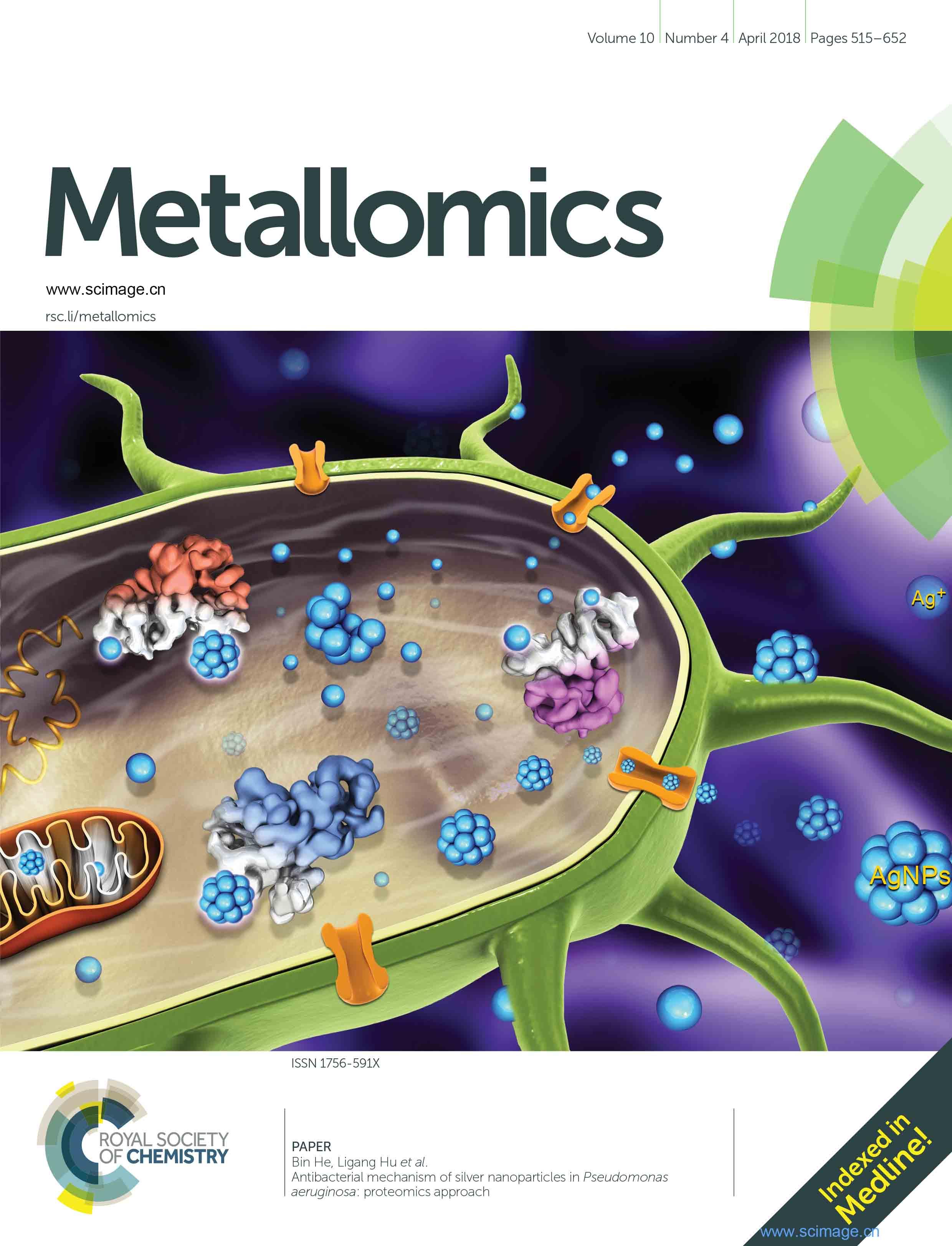 Antibacterial mechanism of silver nanoparticles in Pseudomonas aeruginosa: proteomics approach