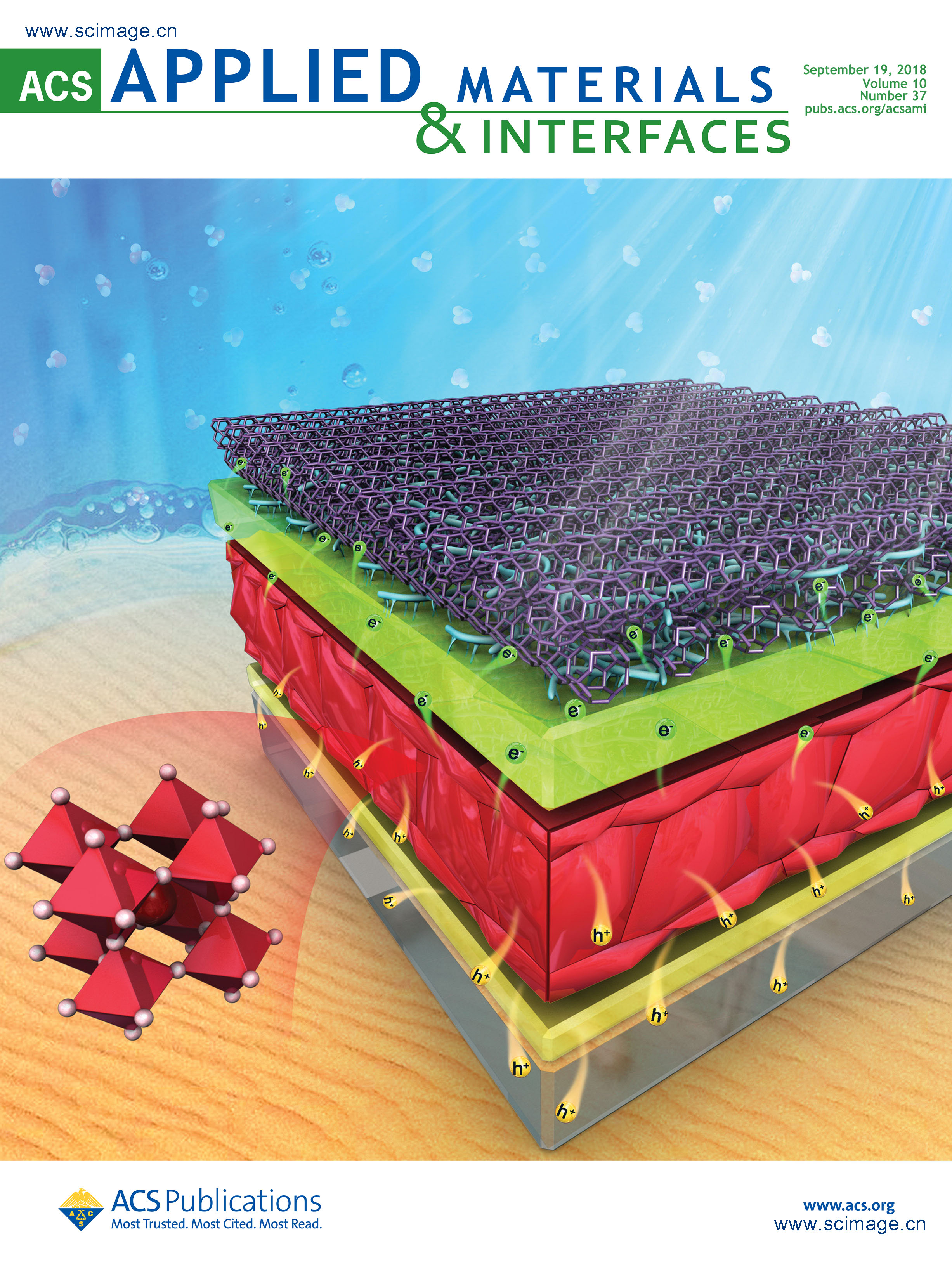 Efficiently Improving the Stability of Inverted Perovskite Solar Cells by Employing Polyethylenimine-Modified Carbon Nanotubes as Electrodes